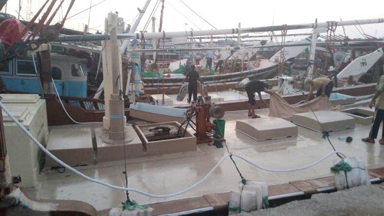 صیادان نگران دریا هستند/ سینیهای میگوفروشان پر از صید غیرمجاز