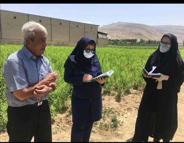 آغاز طرح نسخه نویسی گیاه پزشکی برای اولین بار در فارس
