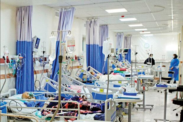 کرونا جان ۱۱ نفر را در استان بوشهر گرفت/ بستری ۲۰۲ بیمار جدید