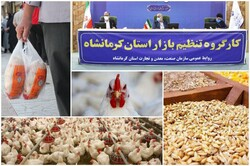 افزایش غیررسمی قیمت مرغ دولتی در کرمانشاه در سایه حمایت دولتی!