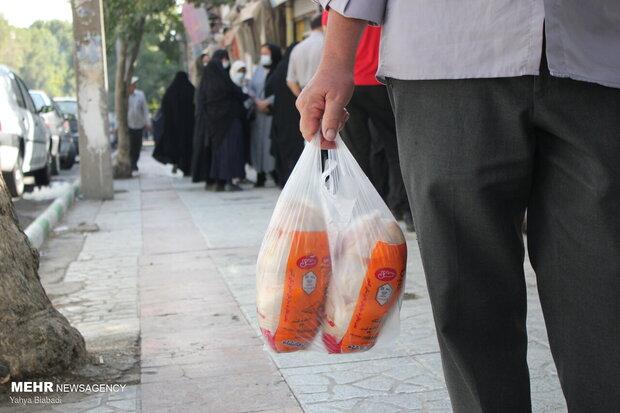 افزایش غیررسمی قیمت مرغ دولتی در کرمانشاه در سایه حمایت دولتی!/ آخرین تیرهای به جاماندگان دولت دوازدهم بر معیشت مردم