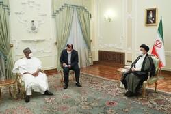 ایران و نیجریه ظرفیتهای مناسبی برای گسترش روابط دارند