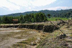 خسارت سنگین سیل به محصولات کشاورزی در حاجی آباد