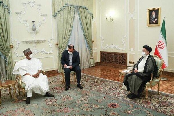 Iran, Nigeria have good potentials to expand ties: Raeisi