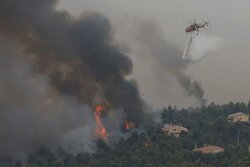 Yunanistan'da orman yangınlarıyla mücadele sürüyor!