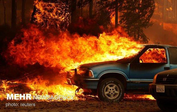 ABD'nin orman yangınları devam ediyor! 8 kişi kayıp
