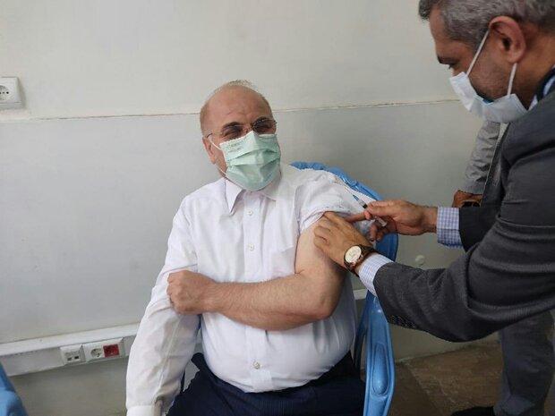 قالیباف اولین دُز واکسن ایرانی برکت را دریافت کرد