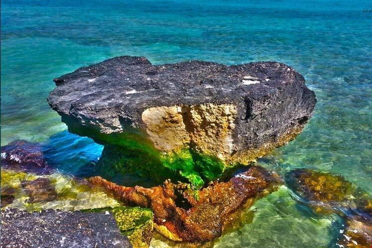 احیای زیست بومهای مرجانی و ساخت زیستگاههای مصنوعی در آبهای کیش