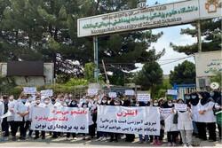 حمایت شوراهای صنفی از مطالبات کارورزان پزشکی/ آیین نامه شرح وظایف بازنگری شود