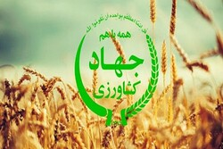 ۲ مدیر جهاد کشاورزی کرمانشاه برکنار شدند