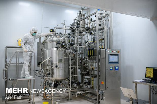 'COVIran Barekat' production line