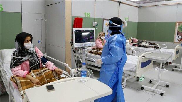 بستری۱۴۵بیمار مشکوک به کرونا در بیمارستانهای قم/۱۷نفر فوت کردند