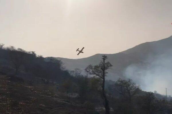 Italian wildfires threaten UNESCO-Protected beech forests