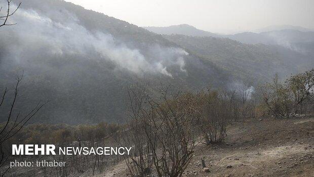 وقوع ۱۶ فقره حریق طی سال جاری در جنگل های غرب مازندران