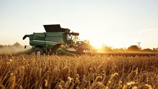 ۵۰ درصد اراضی آذربایجان شرقی مشمول طرح جهش تولید در دیمزارها است