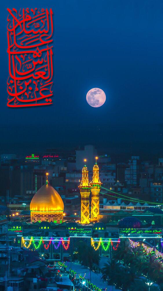 یاران امام حسین در اوج بصیرت/تعبیر «نافذَ البصیره» برای حضرت عباس