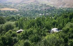 Afghan military plane crashes in Uzbek border region