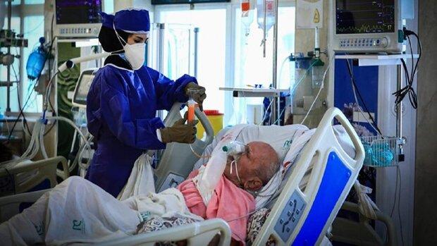 تسجيل 555 حالة وفاة جديدة بفيروس كورونا