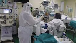 ۸۲۷ بیمار در بخشهای کرونایی بوشهر بستری هستند/ ثبت ۱۴ فوتی جدید