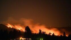 ABD'deki orman yangınları devam ediyor