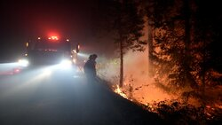 آتش سوزی های جنگل در کالیفرنیا صدها هکتار را خاکستر کرد