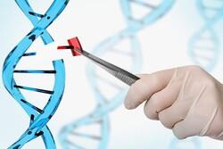 İranlı araştırmacılar kalıtsal kanserleri tespit etmek için ürün geliştirdi