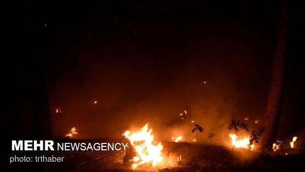 VIDEO: wildfires in California's Caldor