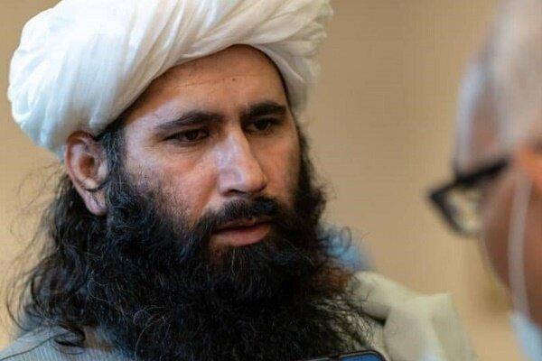طالبان هرگونه اختلاف داخلی میان این گروه را تکذیب کرد