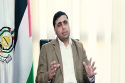 Palestinian nation has lots of options to pressurize Tel Aviv