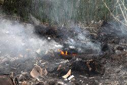 رعدو برق «تنگ مراد» علامرودشت  را به آتش کشید