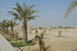 وضعیت آرامستان جدید بوشهر زیبنده نیست/ لزوم تامین امکانات اولیه