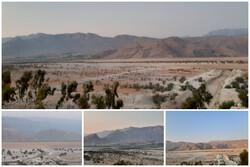 پریشانی بزرگترین دریاچه آب شیرین خاورمیانه ادامه دارد/ نقش نیروگاه و کشاورزی در مرگ تالاب