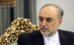 ایران در طول تاریخ دو بار الگوی حکمرانی برای جهانیان بوده است