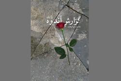 کتاب برگزیده جشنواره حبیب غنی پور به چاپ دوم رسید