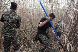 ادامه آتش سوزی در نیزارهای تالاب انزلی/ سپاه وارد عمل شد