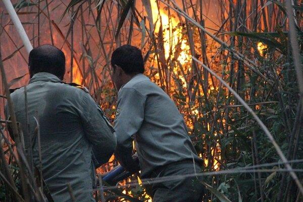 3878502 - آتش طمع سودجویان به جان اراضی تالاب انزلی