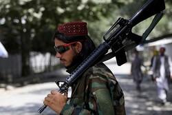 افغان طالبان نے 4 ملزمان کی لاشیں چوک پر لٹکا دیں