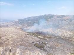 مهار حریق در «جهاننما»/ اطفای کامل منطقه حفاظتشده ادامه دارد