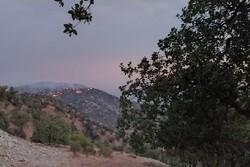 ادامه آتش سوزی جنگل های بویراحمد/ اعزام نیروی اطفای حریق