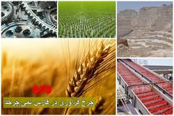برنج و گندم، نان صنعت فارس را آجر کردند/ رویایی به اسم فرآوری