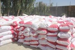 ۲۰۰ تن شیرخشک قاچاق در سیستان و بلوچستان کشف شد