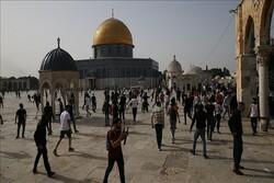Zionist settlers raid Al-Aqsa Mosque in occupied lands