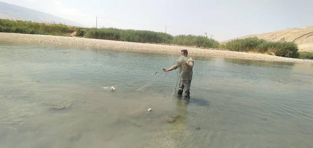 زخمهای عمیق محیطزیست لرستان/ از دامِ شکارچیان تا نهیب خشکسالی