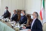 FM Amir-Abdollahian holds meeting with energy minister