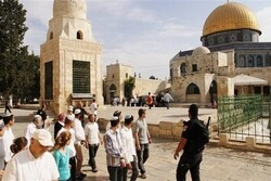 Zionist settlers attack Al-Aqsa Mosque in occupied territory