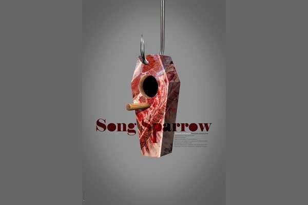 'Song Sparrow' wins best award at Italian festival