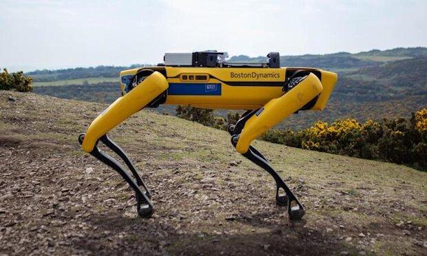 سگ رباتیک خرابی دکل های برق را گزارش می دهد