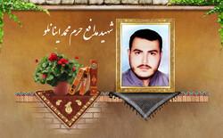 تشییع پیکر شهید مدافع حرم «محمد اینانلو» در کرج برگزار میشود