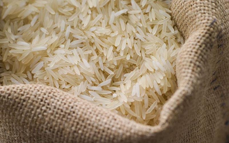 پیشبینی تولید ۲.۲ میلیون تن برنج در سال زراعی جاری