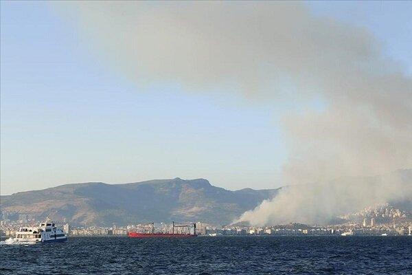 İzmir'in Karşıyaka ilçesinde orman yangını çıktı